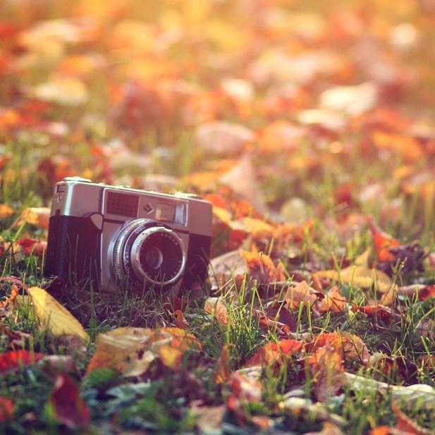 Corso Workshop Visual Storytelling Autumn Leaves