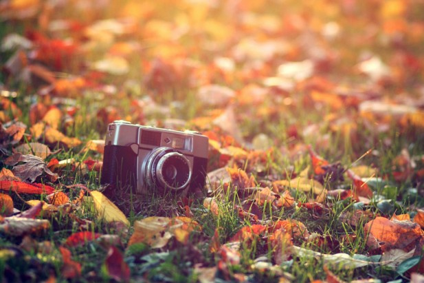 Corso Workshop Visual Storytelling Autumn Leaves